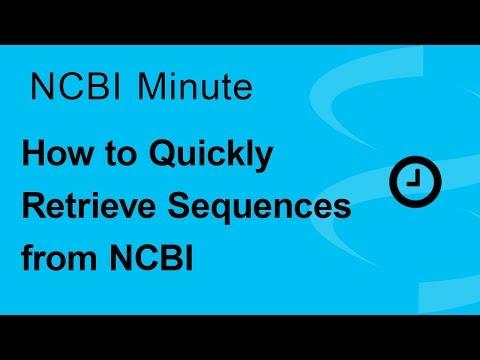 NCBI Minute: How to Quickly Retrieve Sequences from NCBI