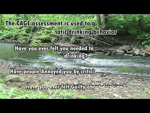 Understanding Alcoholism