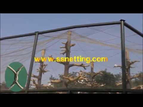 aviary mesh netting, outdoor bird netting, bird aviary fencing, big bird aviary netting