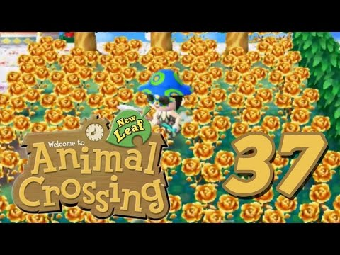 Animal Crossing New Leaf - Episode 37 (Golden Roses)