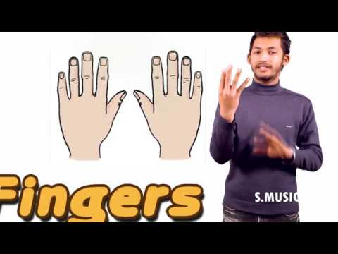 Body Parts Intro   Body Parts   Learn Spelling Videos For Kids Dr Abhisheak Singh