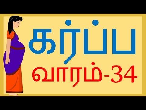 The Pregnancy   Week by Week   Tamil   Week 34