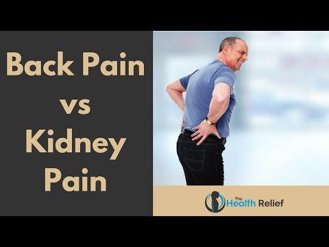 Back Pain vs Kidney Pain