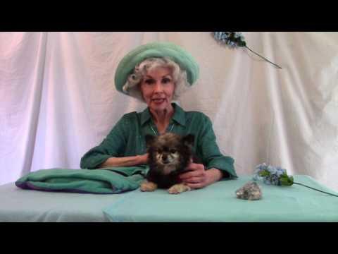 Winnie Finn & Choochie on Ageing & Aggression