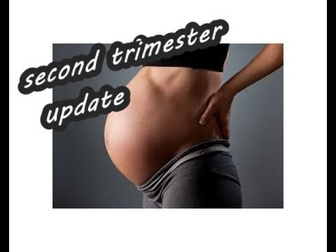 Pregnancy update /Second Trimester summarized, my symptoms ,ligament pain, headaches and my tips