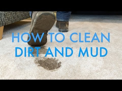 How to Clean Dirt and Mud Stains from Carpet | Life is Clean