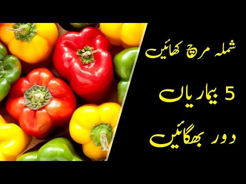 Shimla Mirch Khane Ke Fayde (Benefits of Capsicum)