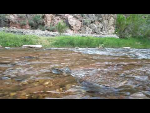 Video of Bright Angel Campground, AZ from Christy C.