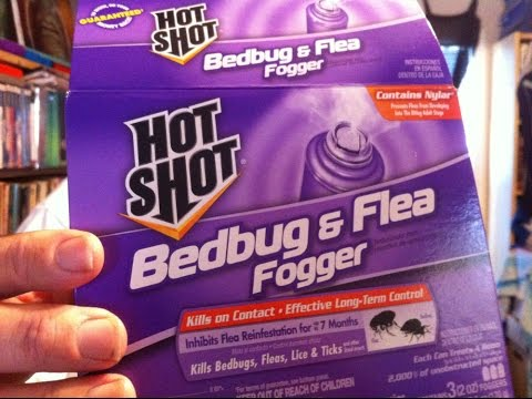 How to Bomb for Bedbugs, Fleas, Lice & Ticks (Live Demonstration with Foggers)