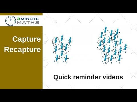 New level 6 GCSE topic - Capture Recapture Eagles question