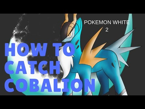 How to Catch COBALION // Pokemon White 2.