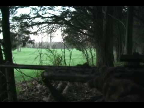 Spring Turkey Hunting with Thompson Calls in West Virginia