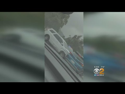 Caught On Camera: Carjacking Suspect Arrested After Wild Pursuit, Struggle With CHP Officer