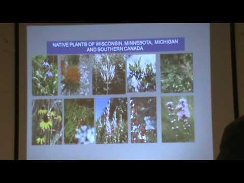 Native Plant Night- Shoreline Restoration
