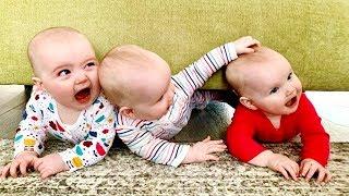 ثلاثة توائم أطفال صنع الضوضاء ★ مضحك فشل فيديو