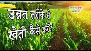उन्नत तरीके से खेती कर किसान ने पेश की मिसाल