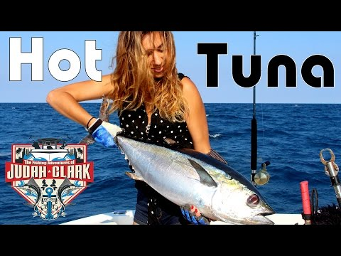 Hot Tuna / Fishing in Miami
