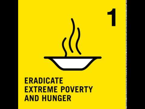 MDG 1 - Eradicate Extreme Poverty and Hunger