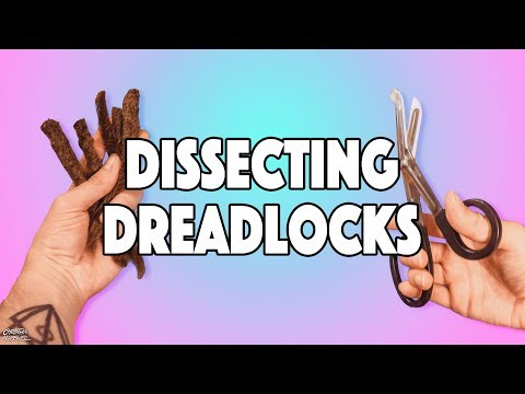 WHAT'S INSIDE 10 YEAR OLD DREADS? - DISSECTING DREADLOCKS!