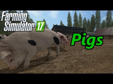 Farming Simulator 17 Tutorial   Pigs