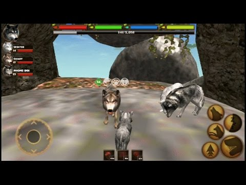 How to get more wolves to the pack in Ultimate Wolf Simulator