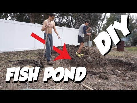 DIY BACKYARD POND!! *My First Pond* PART 2