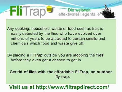How do you Stop Flies Entering a Home?