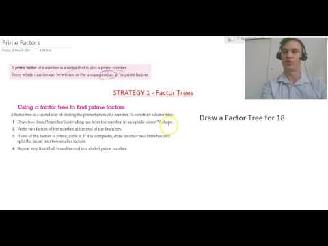 Factor Trees Strategy
