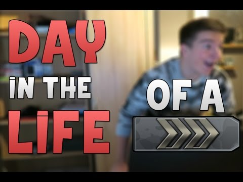 Day In The Life of a Silver!