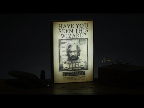 Harry Potter™ Sirius Black™ Luminart | Paladone