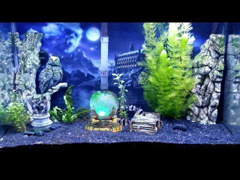 Aquaneat LED Full Spectrum Light Review