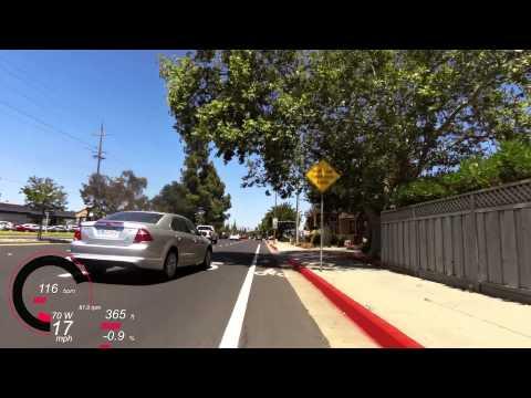 Idiot of July 4 2014, California License Plate Veterans 251EH