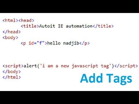 AutoIt IE Automation: add html & javascript tags