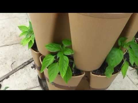 The best grow tower for small spaces