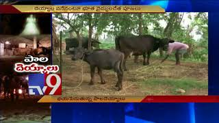 Ghosts that love milk! - TV9