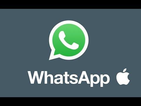 How to Update WhatsApp in Mac - Macbook Pro, iMac, Mac pro, Macbook air