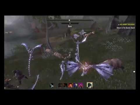 The Elder Scrolls Online: Bots