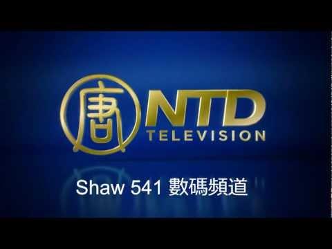 NTD -Shaw-541 Version-2