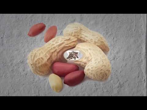 Cure Shingles | How To Get Rid Of Shingles Naturally - How To Cure Shingles fast