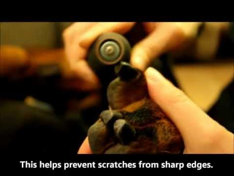 How to Dremel a dog's nails