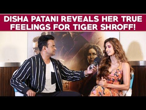 Xxx Mp4 Disha Patani Reveals Her True Feelings For Tiger Shroff Bharat 3gp Sex
