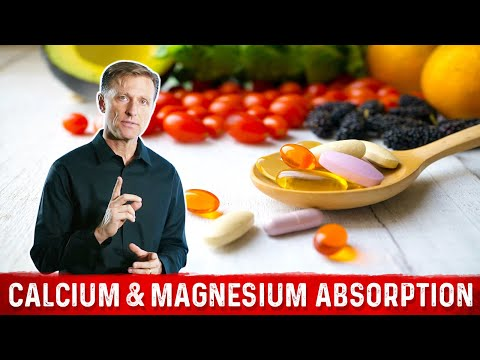 Calcium & Magnesium Absorption Basics