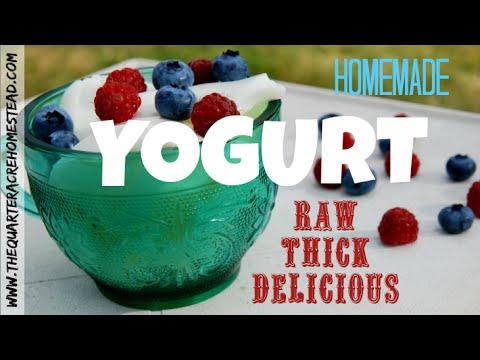 How to Make Raw Yogurt (thick, delicious, homemade DIY yogurt)