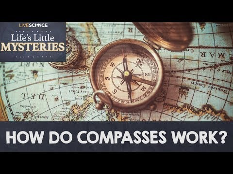How Do Compasses Work?