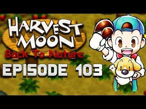Pumpkin Seeds! | Harvest Moon | Back to Nature EP.103