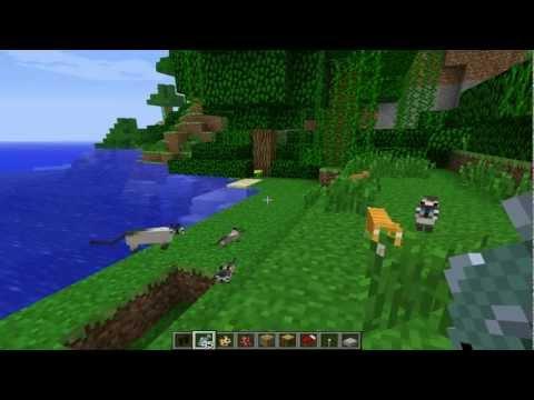 Minecraft: Ocelots, Baby Kittens, Cats !