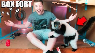 BOX FORT ZOO CHALLENGE! 🐒 W/ LARRY THE LEMUR