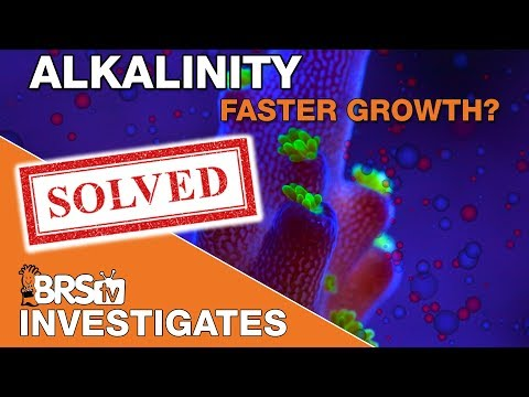 Faster coral growth with elevated major elements? (Alk/Ca/Mag) | BRStv Investigates