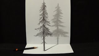 How To Draw A 3D Tree Trunk - 3d Art | Optical illusion