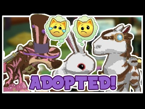 Adopting WisteriaMoon | Animal Jam